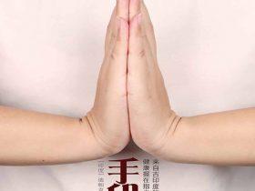 《手印:健康握在指尖 》迪帕克?杜德曼德_文字版_pdf电子书_网盘免费下载