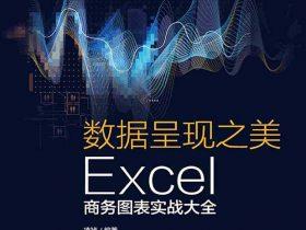 《数据呈现之美:Excel商务图表实战大全》凌祯 PDF电子书 文字版 网盘免费下载