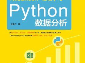 《对比Excel,轻松学习Python数据分析》张俊红_文字版_pdf电子书_网盘免费下载