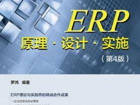 《ERP原理·设计·实施》罗鸿_第4版_文字版_pdf电子书_网盘免费下载
