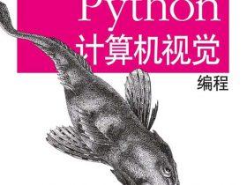 《Python计算机视觉编程》 [瑞典] Jan Erik Solem_文字版_pdf电子书_网盘免费下载