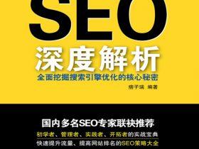 《SEO深度解析:全面挖掘搜索引擎优化的核心秘密》痞子端_文字版_pdf电子书_网盘免费下载