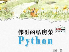 《伟哥的python私房菜》王伟_中国程序员_文字版_pdf电子书_网盘免费下载