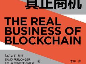 《区块链的真正商机》大卫 · 弗隆_文字版_PDF电子书免费下载