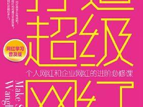 《打造超级网红》沈宇庭_升级版_PDF电子书免费下载